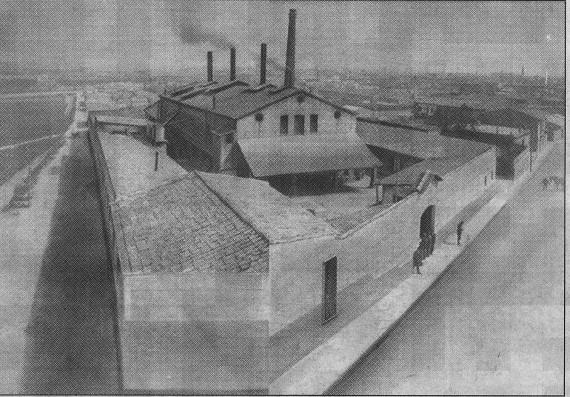 can llofriu 1895