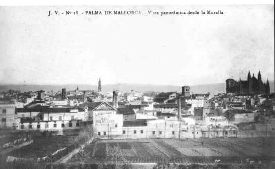 vista palma a bonaire 1910